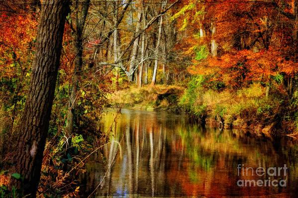 Landscape Print featuring the photograph Bob's Creek by Lois Bryan