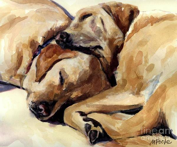 Yellow Labrador Retrievers Print featuring the painting California Dreamers by Molly Poole