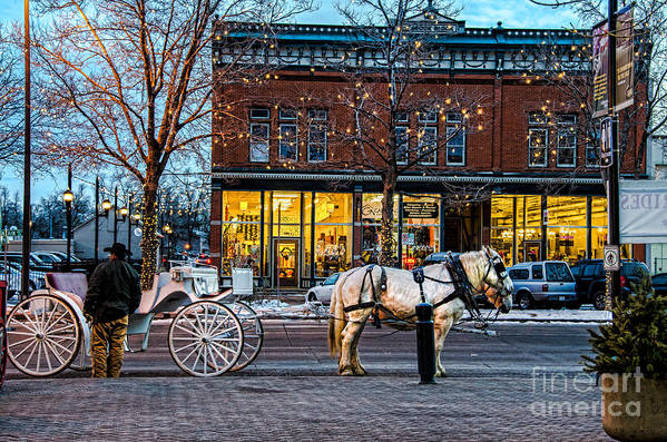 Horse Print featuring the photograph Carriage Ride by Baywest Imaging