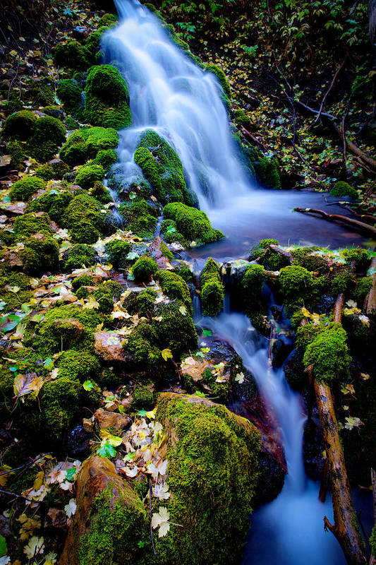Landscape Print featuring the photograph Cascade Creek by Chad Dutson