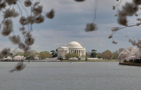 America Print featuring the photograph Cherry Blossoms With Jefferson Memorial - Washington Dc - 011318 by DC Photographer