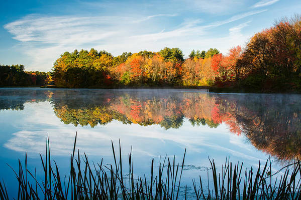 Grist Millpond Print featuring the photograph Color On Grist Millpond by Michael Blanchette