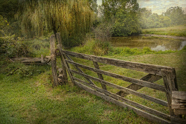 Savad Print featuring the photograph Country - Gate - Rural Simplicity by Mike Savad