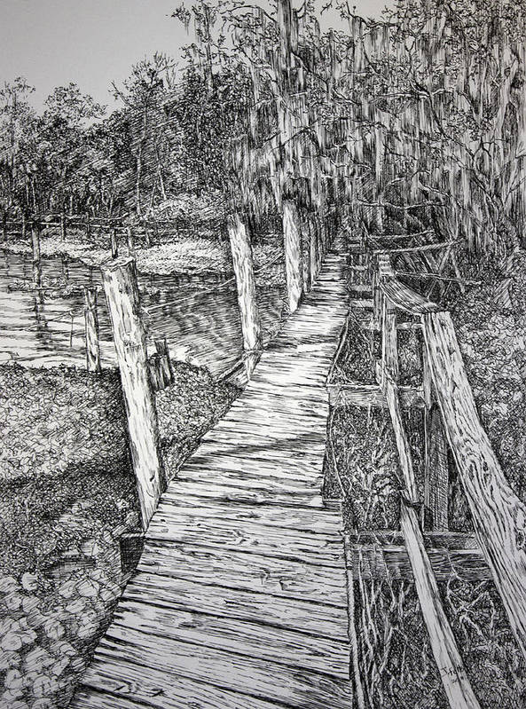 Florida Landscape Print featuring the drawing Days Gone By by Janet Felts