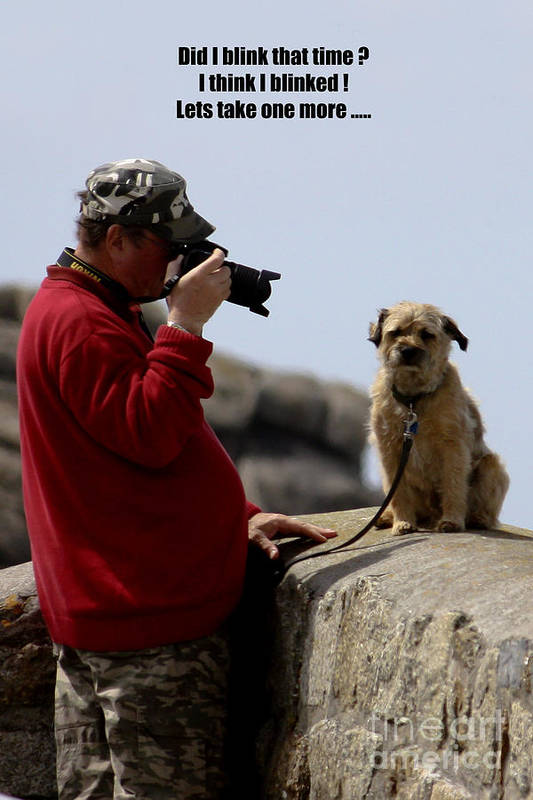 Photographer Print featuring the photograph Dog Being Photographed by Terri Waters