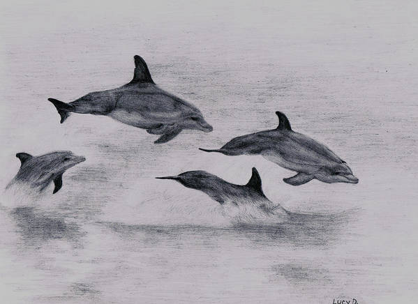 Dolphin Print featuring the drawing Dolphins by Lucy D