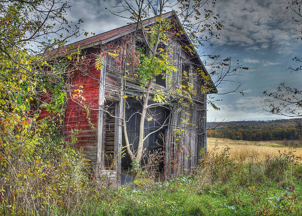 Shed Print featuring the digital art Extra Storage by Sharon Batdorf