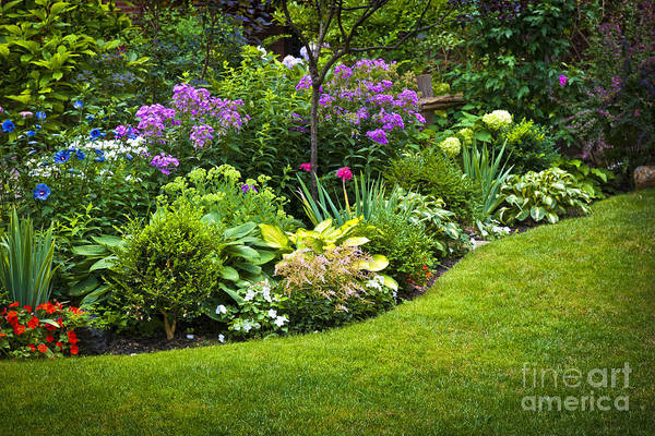 Garden Print featuring the photograph Flower Garden by Elena Elisseeva