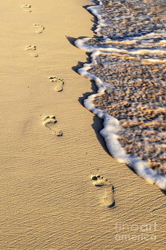 Footprints Print featuring the photograph Footprints On Beach by Elena Elisseeva