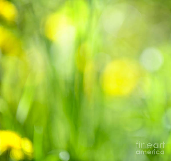 Green Print featuring the photograph Green Grass With Yellow Flowers Abstract by Elena Elisseeva