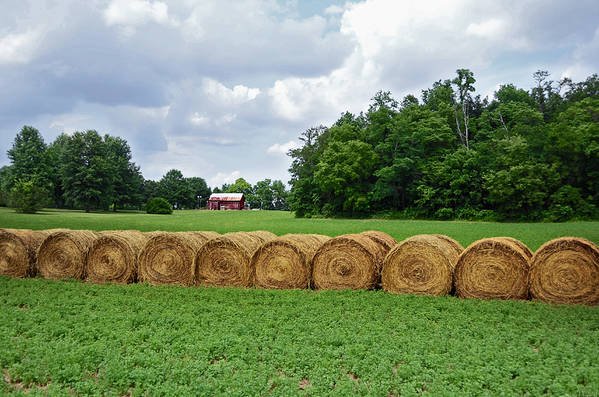 Hay Print featuring the photograph Hay Day by Steven Michael