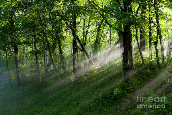 Blue Ridge Parkway Print featuring the photograph Hope Lights Eternal - Blue Ridge Parkway I by Dan Carmichael