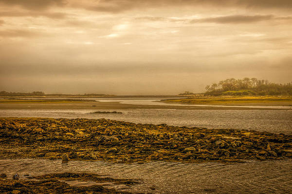 Atlantic Ocean Print featuring the photograph Low Tide Cape Porpoise Maine by Bob Orsillo