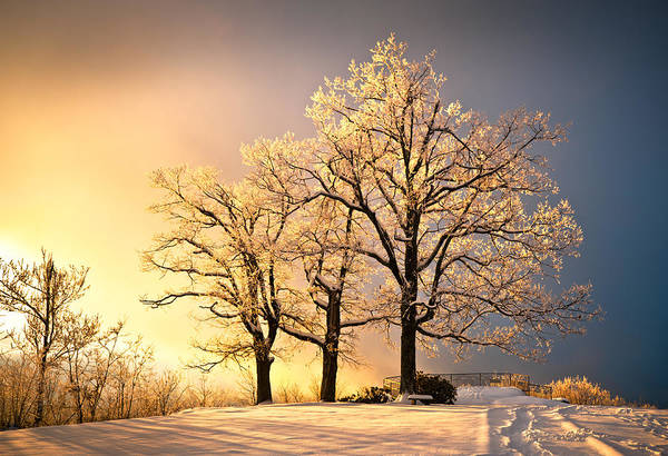 Winter Print featuring the photograph Luminous - Blue Ridge Winter Sunset by Dave Allen