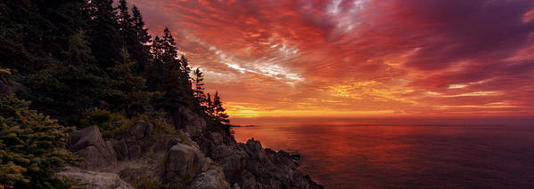 Maine Coast Print featuring the photograph Maine's Bold Coast by Chad Tracy