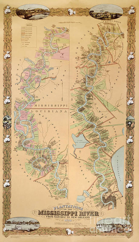 Map Depicting Plantations On The Mississippi River From Natchez To New Orleans Print featuring the drawing Map Depicting Plantations On The Mississippi River From Natchez To New Orleans by American School