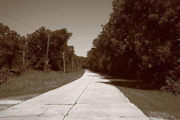 66 Print featuring the photograph Missouri Route 66 2012 Sepia. by Frank Romeo