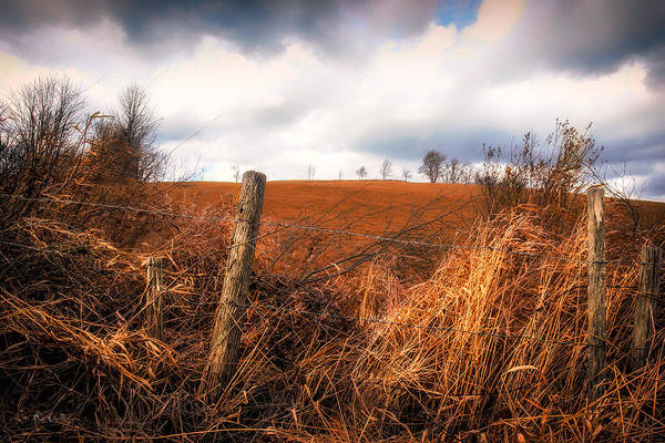Landscape Print featuring the photograph Mountain Pasture by Bob Orsillo
