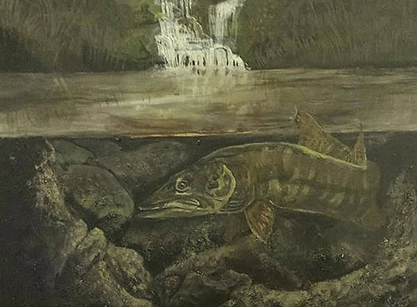 Muskie Print featuring the painting Muskellunge by Fallon Franzen