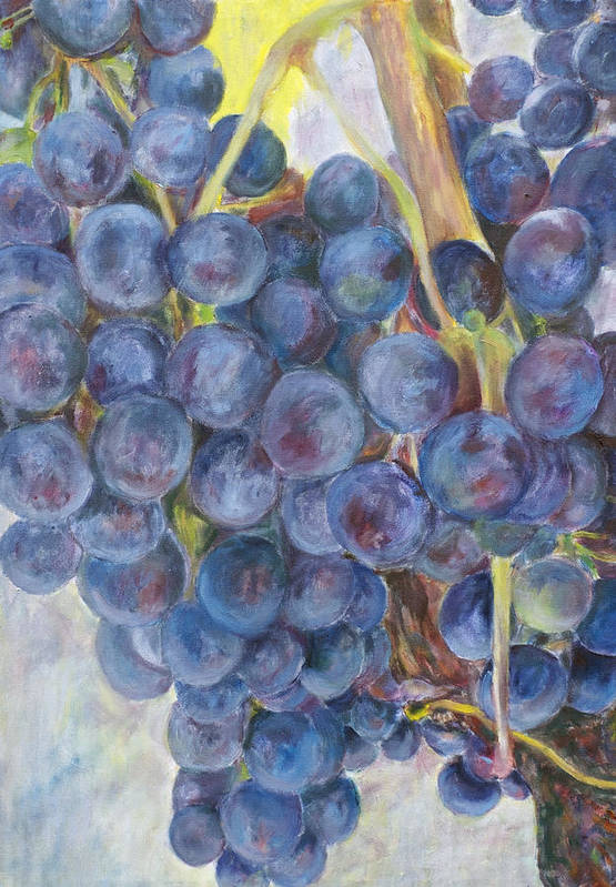 Grapes Print featuring the painting Napa Grapes 1 by Nick Vogel