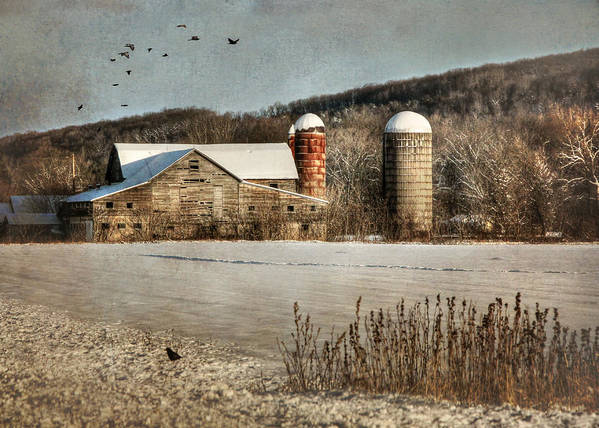 Rural Print featuring the photograph Neglected by Lori Deiter