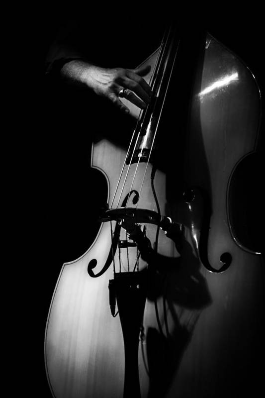 Jazz Print featuring the photograph New Orleans Strings by Brenda Bryant