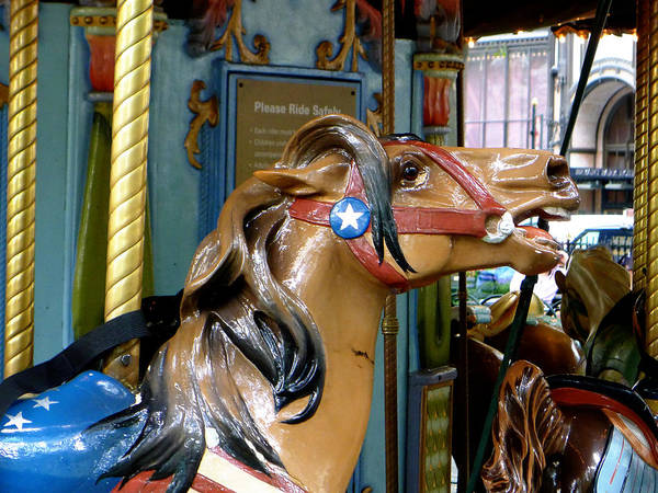 Carousel Print featuring the photograph Nyc - Horsing Around In Bryant Park by Richard Reeve