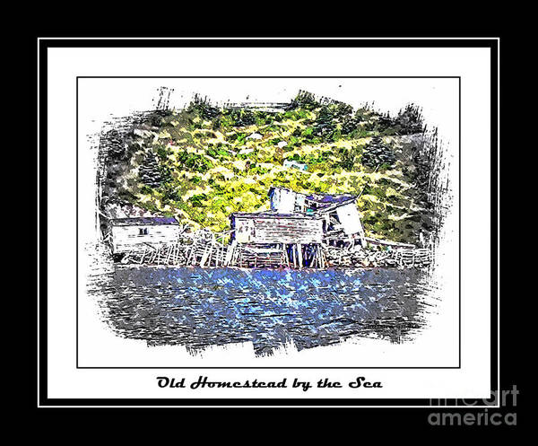 Old Homestead Print featuring the photograph Old Homestead By The Sea by Barbara Griffin