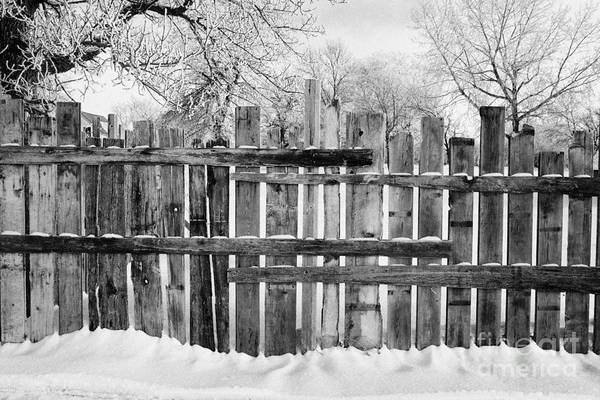 Old Print featuring the photograph old patched up wooden fence using old bits of wood in snow Forget Saskatchewan Canada by Joe Fox