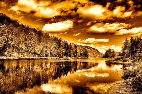 Landscapes Print featuring the photograph On Golden Pond by David Patterson