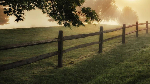 Fence Print featuring the photograph On The Fence by Bill Wakeley