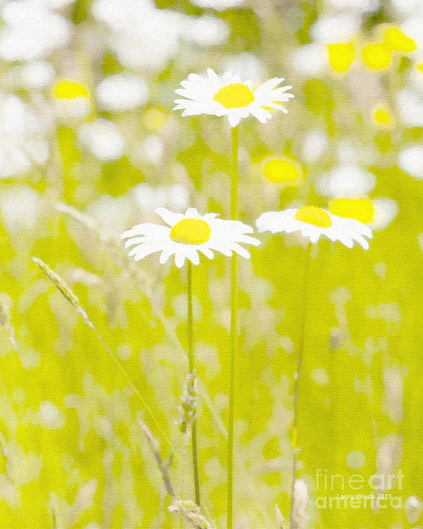 Daisy Print featuring the painting Oopsy Daisy by Artist and Photographer Laura Wrede