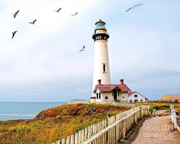 Pigeon Point Lighthouse Print featuring the photograph Pigeon Point Lighthouse by Artist and Photographer Laura Wrede