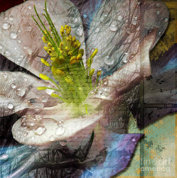 Print featuring the mixed media Pop IIi by Yanni Theodorou
