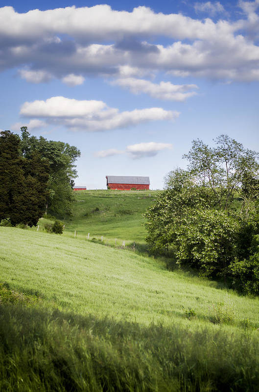 Barn Print featuring the photograph Red White And Blue by Heather Applegate