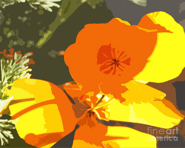 Abstract California Poppies Print featuring the photograph Retro Abstract Poppies by Artist and Photographer Laura Wrede