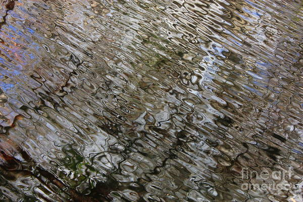Nature Abstract Print featuring the photograph Ripples In The Swamp by Carol Groenen