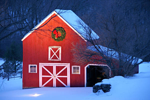 Holiday Greetings Print featuring the photograph Seasons Greetings by Thomas Schoeller