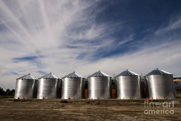 Silos Print featuring the photograph Shiny Silos by Juan Romagosa