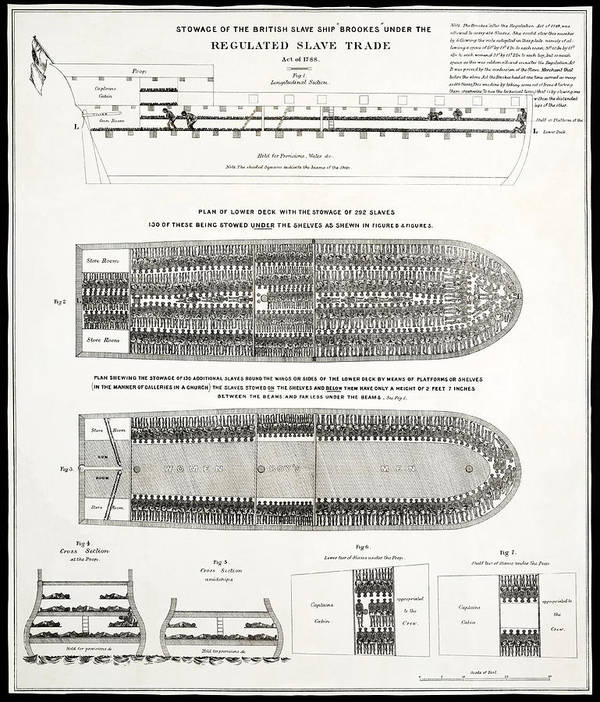 Slavery Print featuring the photograph Slave Ship Middle Passage Stowage Diagram 1788 by Daniel Hagerman