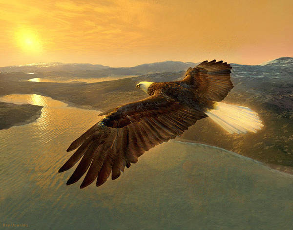 Eagle Print featuring the digital art Soaring Eagle by Ray Downing