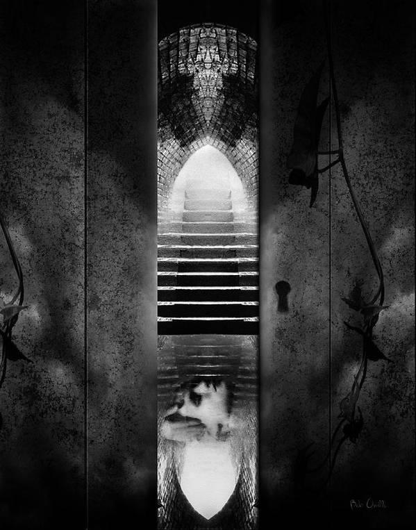 Asylum Print featuring the photograph Soft Asylum by Bob Orsillo