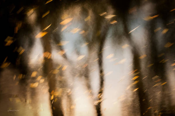 Abstract Print featuring the photograph Soft Autumn by Steven Milner