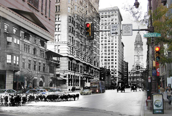 Philadelphia Print featuring the photograph South Broad Street Sheep by Eric Nagy