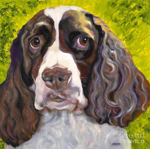 Dogs Print featuring the painting Spaniel The Eyes Have It by Susan A Becker