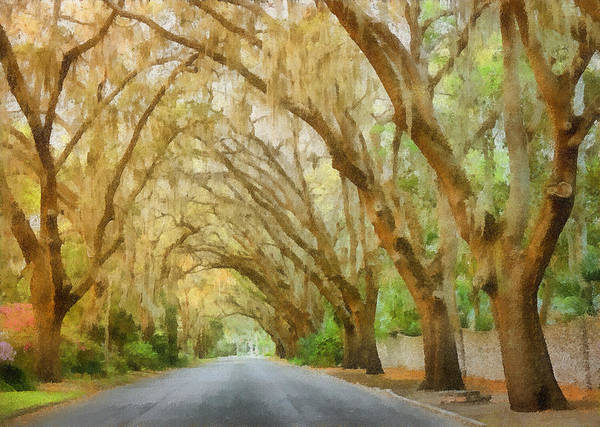 Spanish Print featuring the painting Spanish Moss - Symbol Of The South by Christine Till