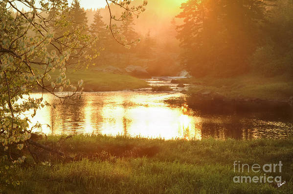 Spring Print featuring the photograph Spring Sunset by Alana Ranney