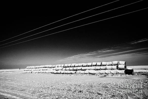 Stack Print featuring the photograph stack of frozen snow covered hay bales in a field Forget Saskatchewan Canada by Joe Fox