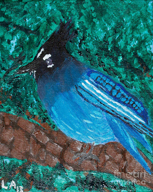 Stellar's Jay Print featuring the painting Stellar's Jay by Lloyd Alexander