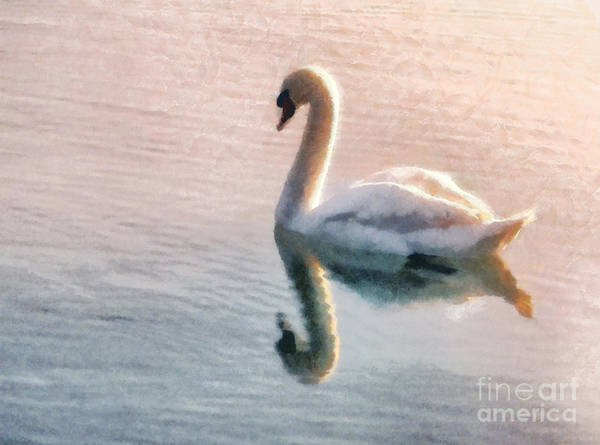 Swan Print featuring the painting Swan On Lake by Pixel Chimp